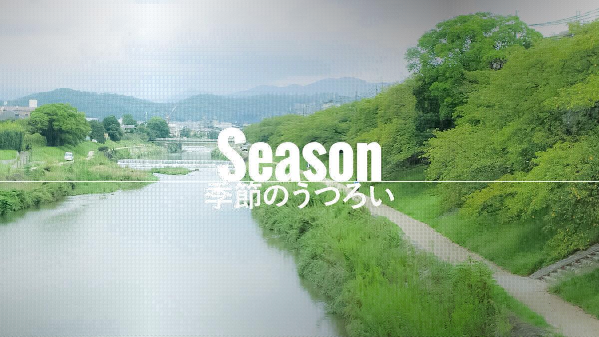 季節のうつろい